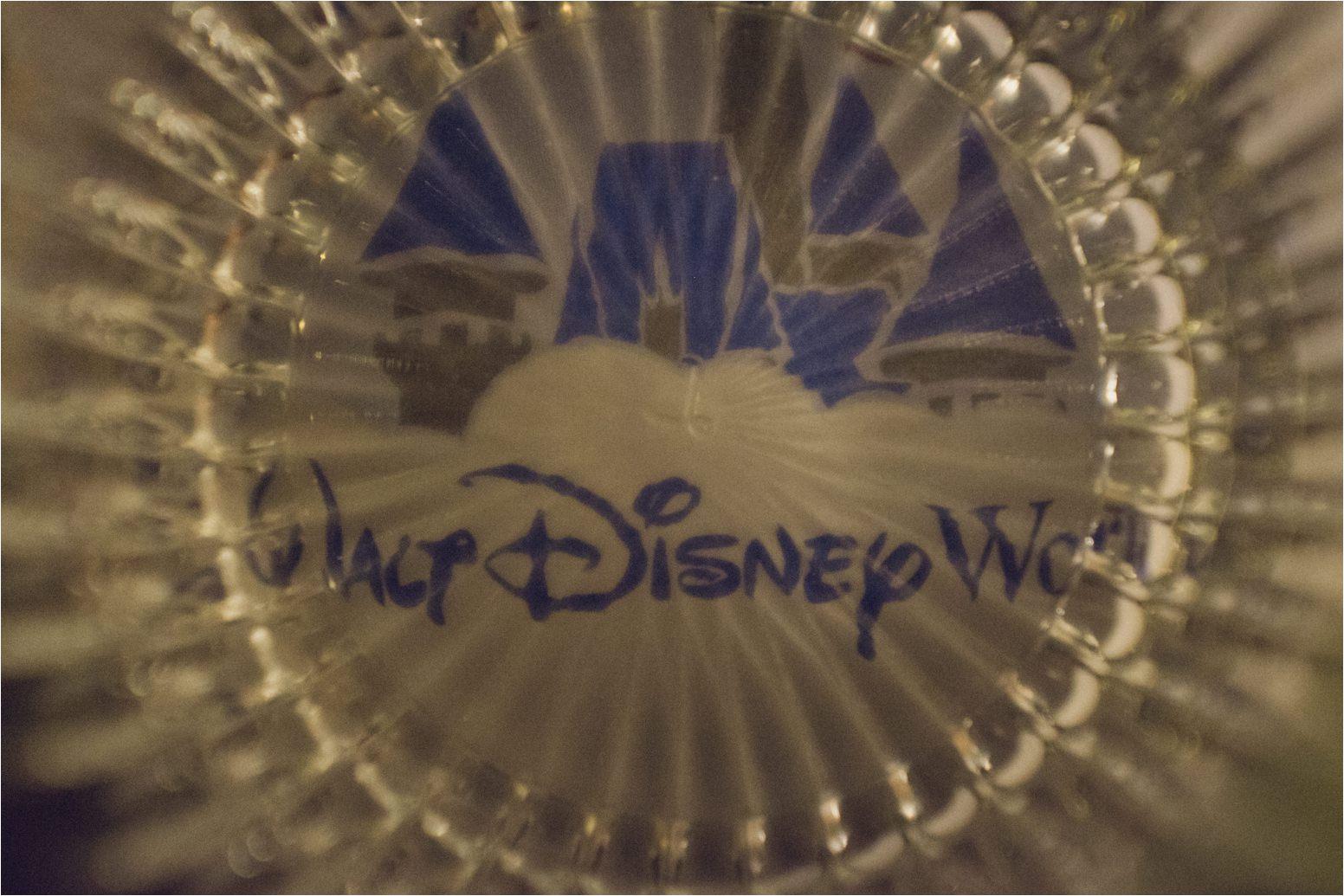 Walt Disney World 19