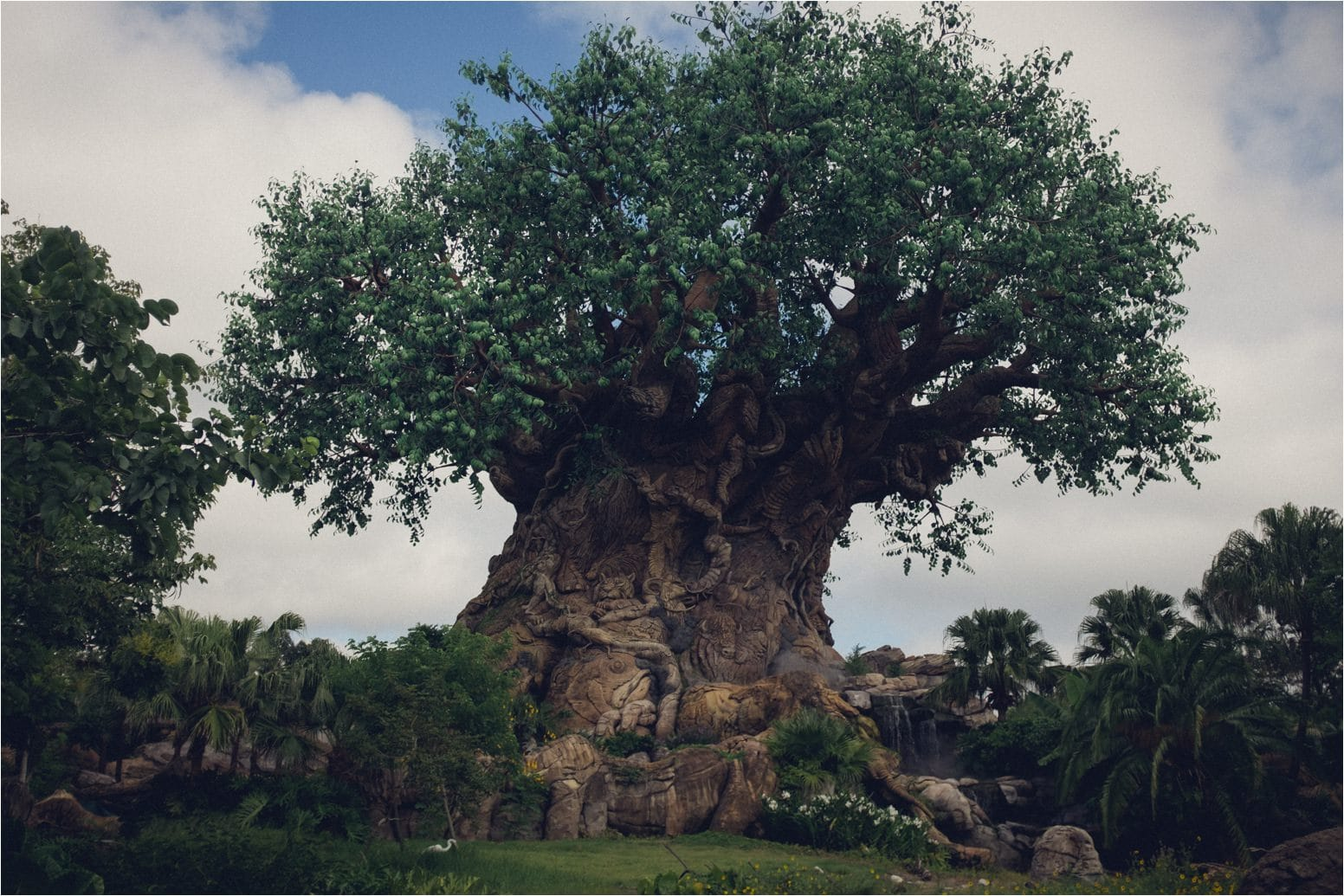 Walt Disney World 84